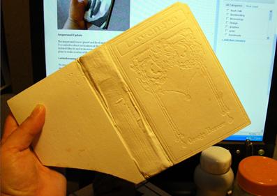 plaster cover